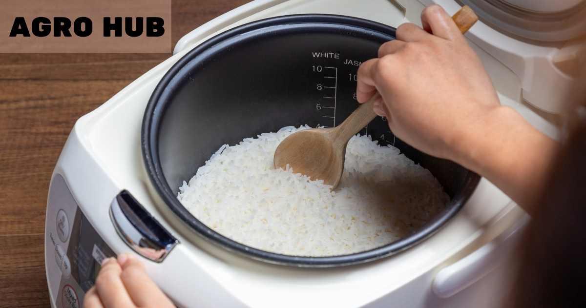 Best Basmati Rice Cooker