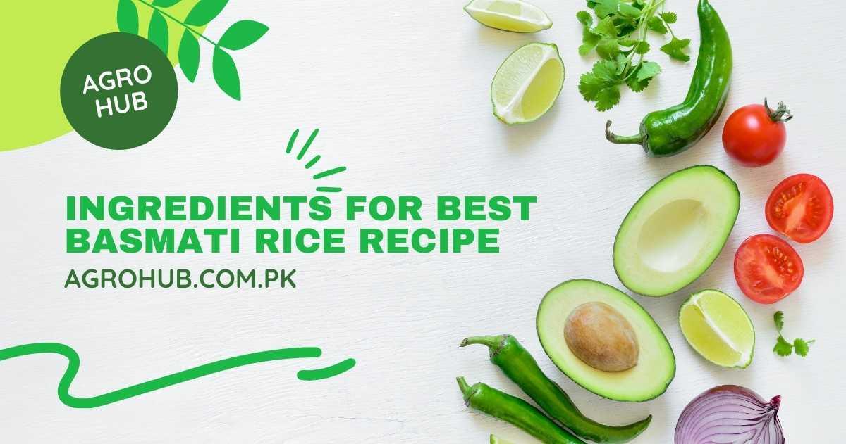 Best Basmati Rice Recipe