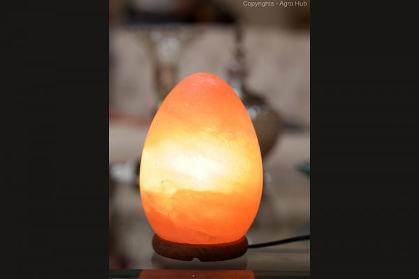 Egg Shape Lamp
